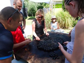 Eglade of mussels Camping Les Grissotières