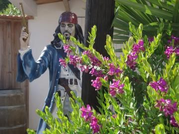 Jack Sparrow is waiting for you at Camping Les Grissotières