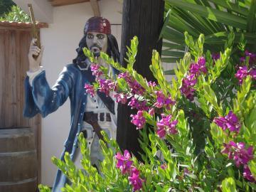 Jack Sparrow te está esperando en el Camping Les Grissotières